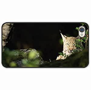 iPhone 4 4S Black Hardshell Case lynx forest thickets predator Desin Images Protector Back Cover