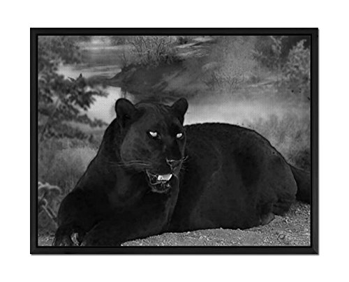 Big Cat - Art Print Wall Art Canvas stretched With Black Wooden Frame - Black and White