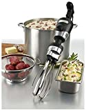 immersion blender 10 - Waring Commercial WSBPPW Heavy-Duty Big Stix Immersion Blender with 10-Inch Whisk