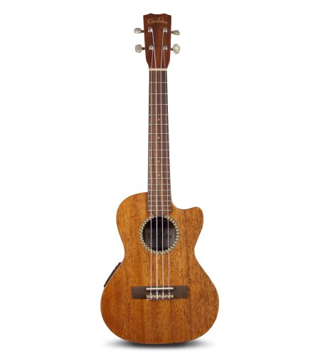 Cordoba 20TM-CE Acoustic Electric