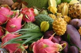 Exotic Fruit Box (10lb)