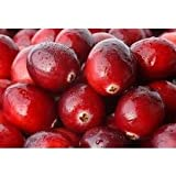 Cranberry Sweet Scent - 1946 - Candle & Soap Fragrance Oil - 16 Oz (1 lb) - High Performance Supply - Special Promotion