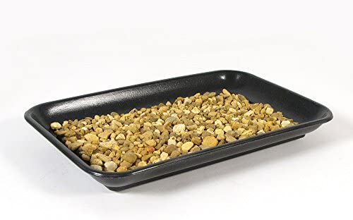 Eve s Bonsai Humidity Drip Tray 6 x 9 with Pebbles Eco Friendly Material,Stronger, More Durable, classier Than Plastic Trays Overall Size 6 x9 to fit a 4.5 x7.75 on The Bottom of Your Pot