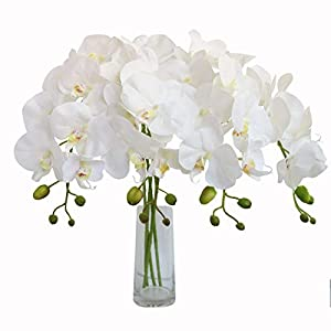 Jasming 2pcs Real Touch Orchid Flowers Artificial Branches Green Stems Arrangement for Wedding Home Garden Decoration 8