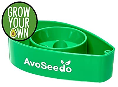 AvoSeedo Plastic Bowl, Evergreen