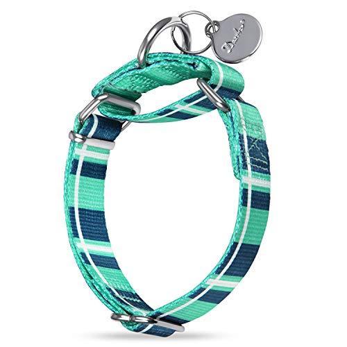 Dazzber Martingale Collar Dog Collar No Pull Pet Collar Heavy Duty Dog Martingale Collars Silky Soft with Unique Pattern…