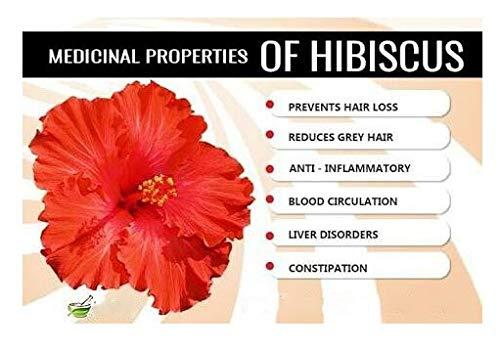 Liberty International Organic Herbal Hibiscus Flower Powder For Hair