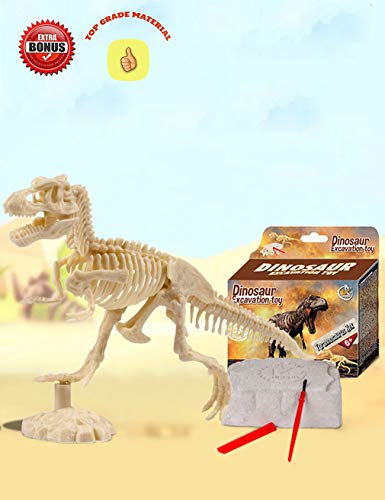 AKINGSHOP Dinosaur Excavation Kits for Kids,Dino Dig Kits T-Rex,Dinosaur Fossil Excavation Kits for Kids,Children's Popular Science Education Toys - Dinosaur DIY Toys (T-Rex), White