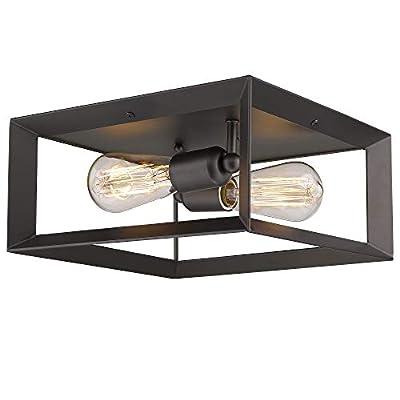 Emliviar 12 inch Ceiling Light, 3040