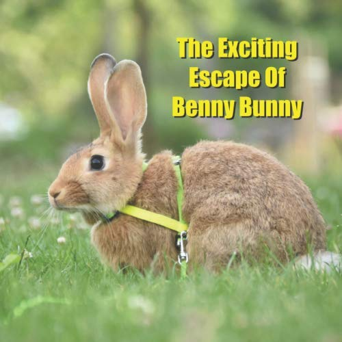 The Exciting Escape Of Benny Bunny: A Cute Tale of a Rascally Rabbit