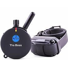 Educator ET-800TS 1-Mile E-Collar Big Dog Trainer