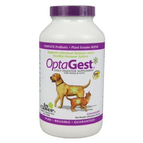 In Clover OptaGest Digestive Aid Dog & Cat Supplement (300 mg)