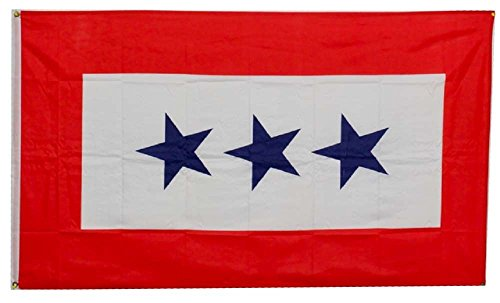 ALBATROS 3 ft x 5 ft Service Star ftThree 3 Starsft Son Service Military Flag Banner Grommet for Home and Parades, Official Party, All Weather Indoors Outdoors ()