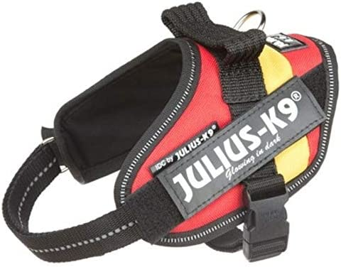Julius K9 16IDC-SP-B2 IDC-Powerharness Taille : Baby 2 M Multicolore Spanish