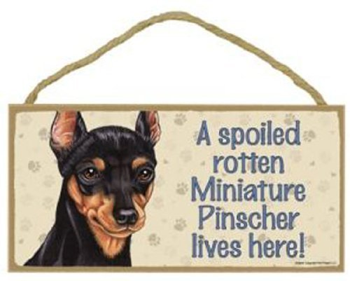 A Spoiled Rotten Miniature Pinscher Lives Here Rustic Wood Sign Plaque Home Sign Decor Wall - Plaque Wall Here