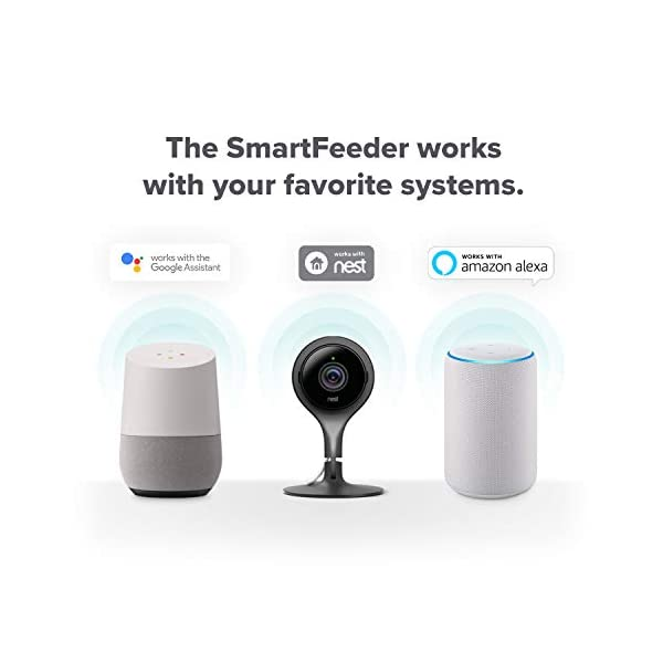 Petnet SmartFeeder (2nd gen) - Automatic Wi-Fi Pet Feeder with Personalized Portions for Cats and Dogs - App for Android, iOS and Compatible with Alexa - White 6
