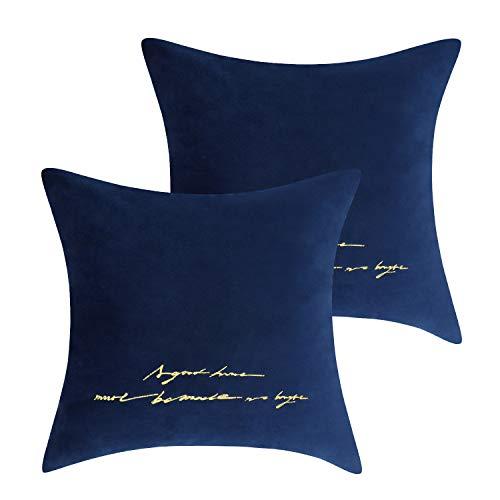 (Lewondr Embroidery Velvet Throw Pillow Case, 2 Pack Soft Square Velvet Throw Pillow Cover, Golden Lines Embroidered Back Cushion Cover 18