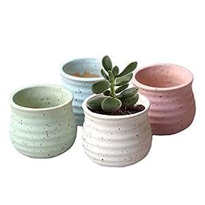 novmay Pack de 4pcs–cerámica carnosas maceta macetas maceta contenedor