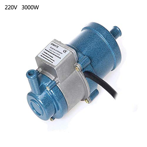 W 220V Circulating Water Heating Car Engine Cycle Preheater, Engine Liquid Heater Water Tank Antifreeze Air Parking Heater Coolant Heating ()