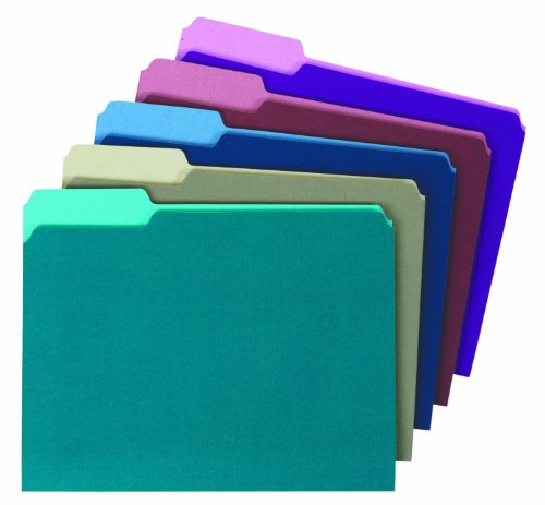 1/3 Cut Single - Globe-Weis/Pendaflex Colored File Folders, 1/3 Cut, Single-Ply Tab, Letter Size, Assorted Colors, Letter Size, 100-Count (11948)