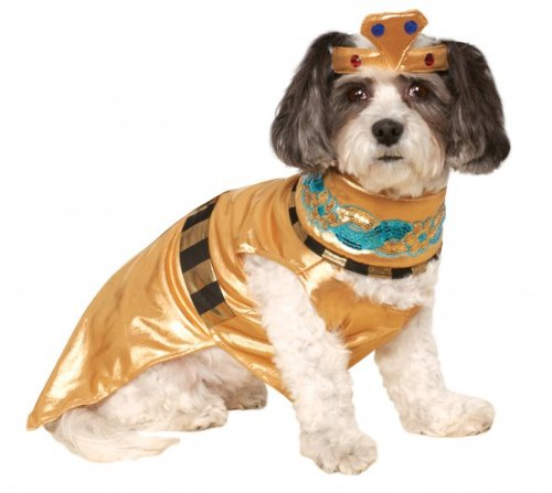 Shimmering Cleopatra Dress and Bejeweled Headpiece for Dogs and Cats