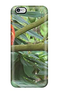 iphone 5c Cover Case - Eco-friendly Packaging(parrot)