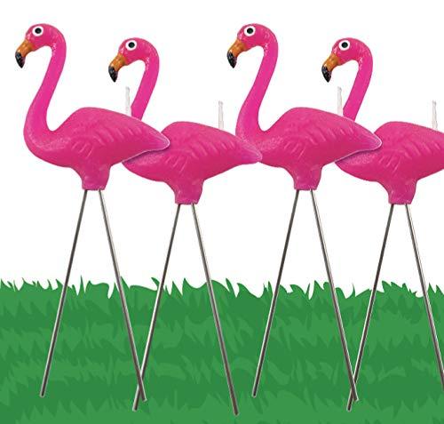 Pink Flamingo 4