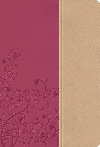 Download NKJV, The Womans Study Bible, Imitation Leather