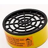 TeemorShop Dual Pot Industrial Gas Mask