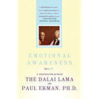 Emotional Awareness: Overcoming the Obstacles to Psychological Balance and Compassion (English Edition)