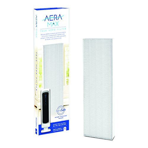 AeraMax 100 Air Purifier True HEPA Authentic Replacement Filter with AeraSafe Antimicrobial Treatment (9287001) by Fellowes