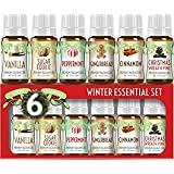 Winter Essential Oil Set of 6 Fragrance Oils - Christmas Wreath Pine, Vanilla, Peppermint, Cinnamon, Sugar Cookie, and Ginger