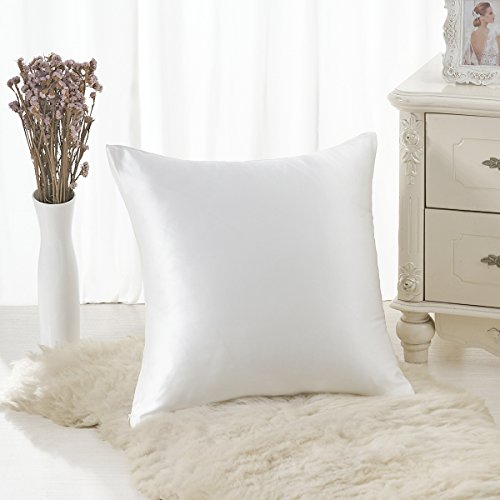 ALASKA BEAR 100% Mulberry Silk Throw Pillowcase,Hypoallergenic, 19 Momme, 600 Thread Count, Square Cushion Cover(18