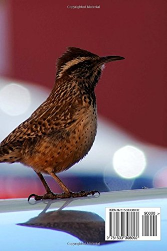 Arizona State Bird Cactus Wren Journal 150 Page Lined Notebook Diary Image Cool 9781533308092 Amazon Com Books