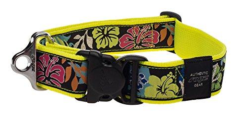Rogz Fancy Dress Special Agent Dog collar - XXL / DayGlo Floral