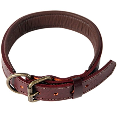 Logical Leather Padded Dog Collar product image