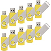 RAOYI 10PCS 2GB USB 2.0 Flash Drive Yellow -Bulk Pack-Pen Drive Thumb Drive Metal Memory Stick Swivel Design