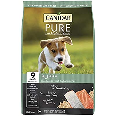 CANIDAE Pure Puppy Real Salmon & Oatmeal Recipe Dry Food