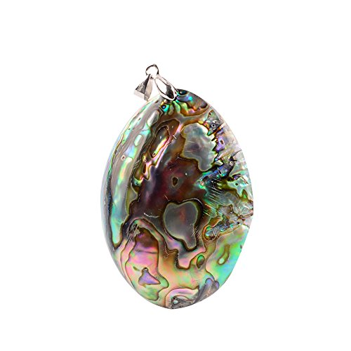 Women Natural Abalone Fossils Seashell Abalone Shell Beads Sliper Shell Pendant for Necklace Jewelry Making Charms (Multicolor)
