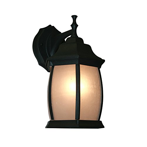 Z-Lite T20-BK-F 1-Light Outdoor Wall Light with Metal Frame, Seedy White