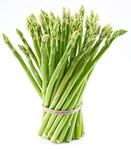 25 Jersey Supreme Male Asparagus Roots - 3 Year EXTRA LARGE Non GMO Heirloom