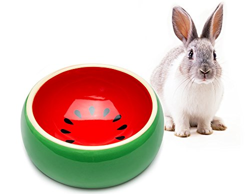 Noisy Guinea Pig - Mkono No-Tip Ceramic Rabbit Food Bowl Feeder for Guinea Pig Hamster Chinchilla, Watermelon