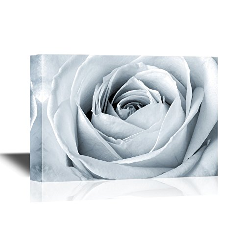 wall26 Floral Canvas Wall Art - White Rose Close Up - Gallery Wrap Modern Home Decor | Ready to Hang - 16x24 inches