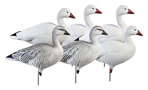 Goose Full Body (Greenhead Gear Pro-Grade Goose Decoy,Full Body Snows/Active Pack,1/2 Dozen)