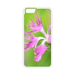 IPhone 6 Cases Beautiful Flowers1, Iphone 6 Case for Men - [White] Okaycosama