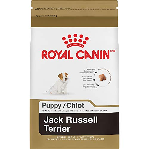 Royal Canin Breed Health Nutrition Jack Russell Terrier Puppy Dry Dog Food, 3 Lb