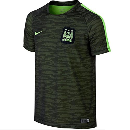 Nike Manchester City Flash Training Top Decept (Black, Ghost Green) Small