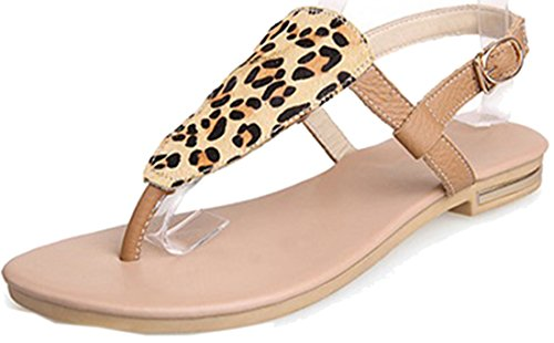 Laruise Women's Leather Flat Sandal apricot 1WmHC