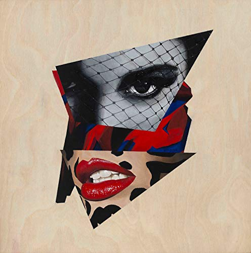 Vakseen Art - Felis Leo - Vanity Pop - collage portrait art - Limited Edition Giclee Print & Framed Pop Art for Wall Decor