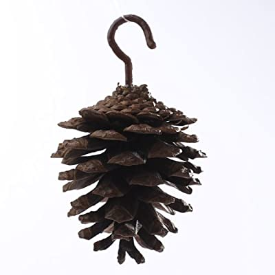 Factory Direct Craft Group of 24 Natural Pine Cone Ornaments for Tree Trim, Holiday Decor and Crafting (24)